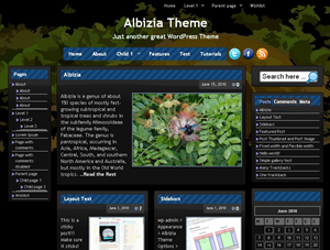 Dark theme with 5 different color schemes. Packed with configurable options such as right or left or holy grail or no sidebar, magazine style or traditional style, custom header, custom background, and many more options as if it's premium theme. Two menu locations that supports Navigation Menu in WordPress 3.0, five widgets area, and beautiful Tabbed Sidebar Widget included. Tested in ALL major browsers. Supports Greg's High Performance SEO Plugin.