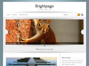 Brightpage screenshot