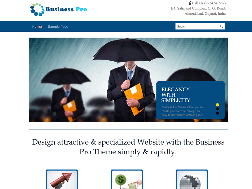 Business Pro screenshot