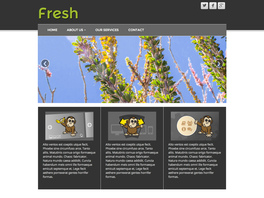 Fresh Lite is a fully Responsive Drag & Drop Starter WordPress Theme that adds amazing new functionality to your WordPress website. Featuring Twitter Bootstrap, and responsive touch friendly theme options that work on any device. Please use the official support forum (http://cyberchimps.com/forum/). Thank you.