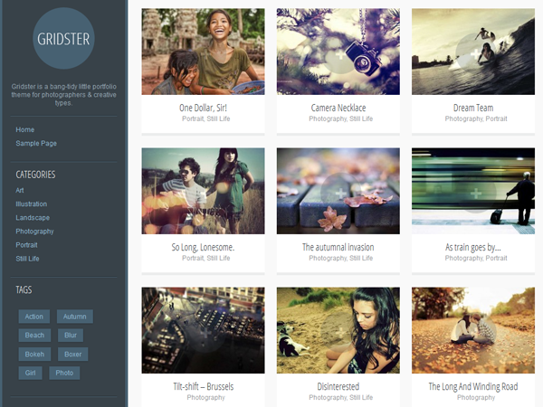 Gridster is a tidy little portfolio theme for photographers and creative types. It has a grid-based homepage, left sidebar and space to show off your images in style. The theme is responsive so it will look good on every screen, from mobiles and tablets up to large desktop displays. Now upload your own logo via the theme customizer.