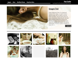 A simple, elegant grid-style theme for photographers and visual artists.