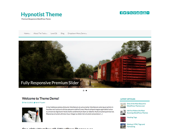 Hypnotist is a Minimaly designed responsive theme, with absolutely fantastic features. It inlcludes options to make your blog look like what you want. Built on Top of Bootstrap, Hypnotist theme will provide you the best SEO Optimized structure for higher rankings in search engines. If you want a successful site, you need to hypnotize your readers.