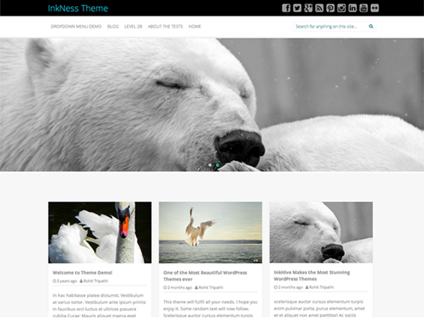Inkness is a Responsive theme with 3 Column Grid based homepage layout. This theme is overloaded with plenty of featured, including an amazing reponsive slider, Multiple Page Layouts, Configurable Sidebar Locations, Footer Widgets & Easy to use admin Panel. This theme is upgradable to a pro version to enable more features. .pot file has been provided, so that you can translate theme into any language.