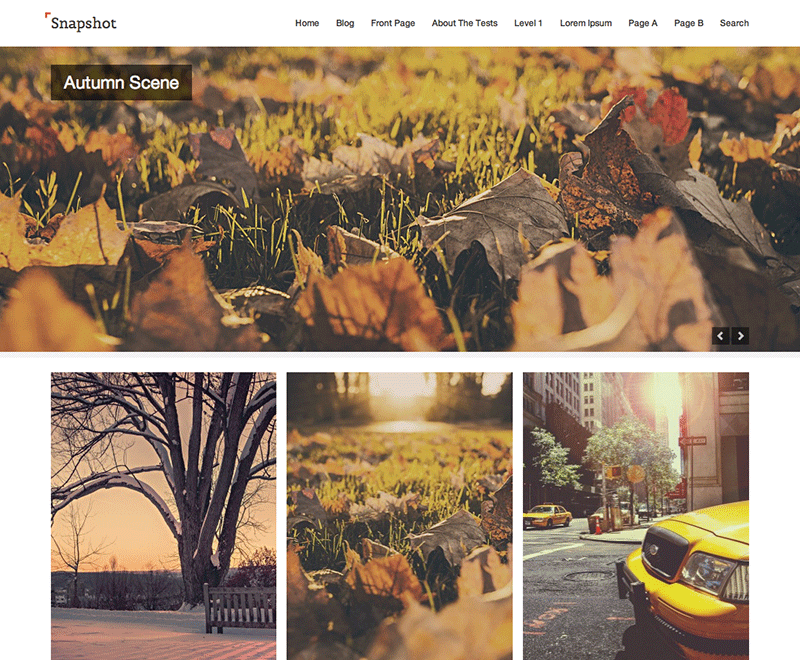 Snapshot wp theme