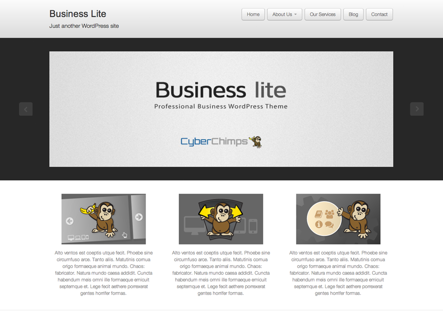 Business lite screenshot