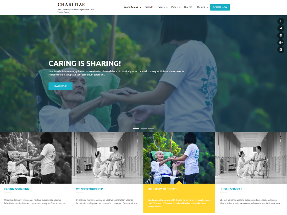 Top 15 Best Free Charity WordPress Themes 2019 3