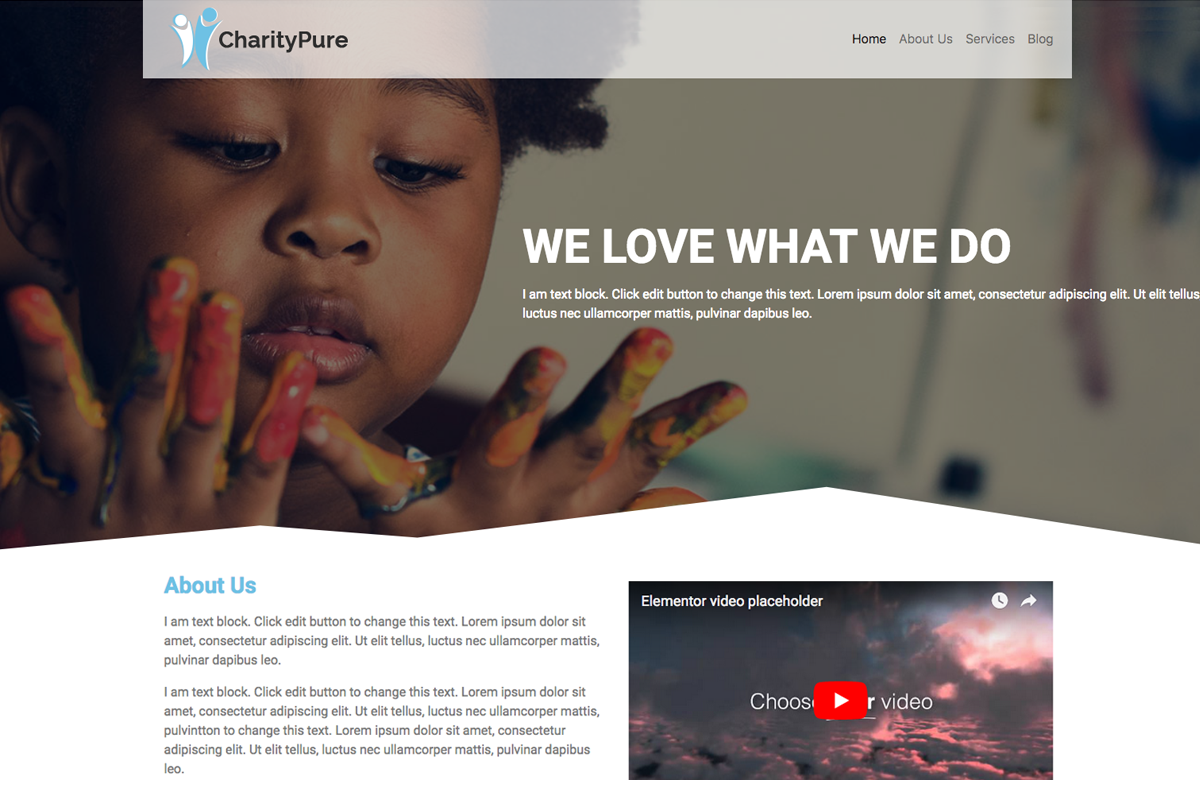 Top 15 Best Free Charity WordPress Themes 2019 12