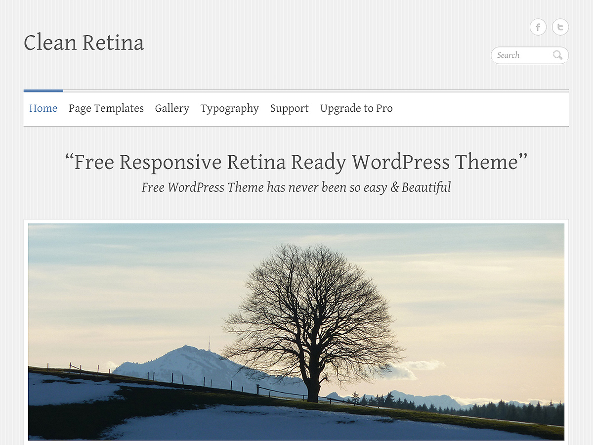 Template WordPress Clean Retina