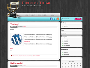Director Theme screenshot