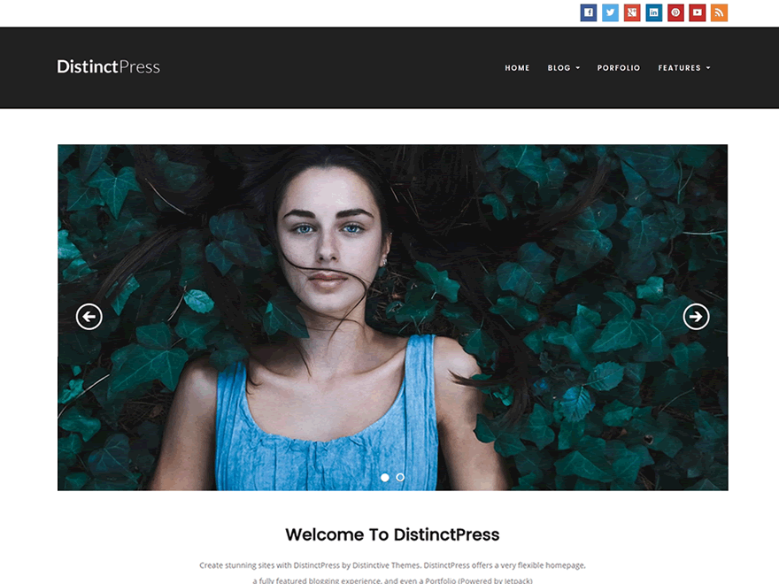 DistinctPress screenshot