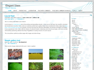 Elegant Glass screenshot