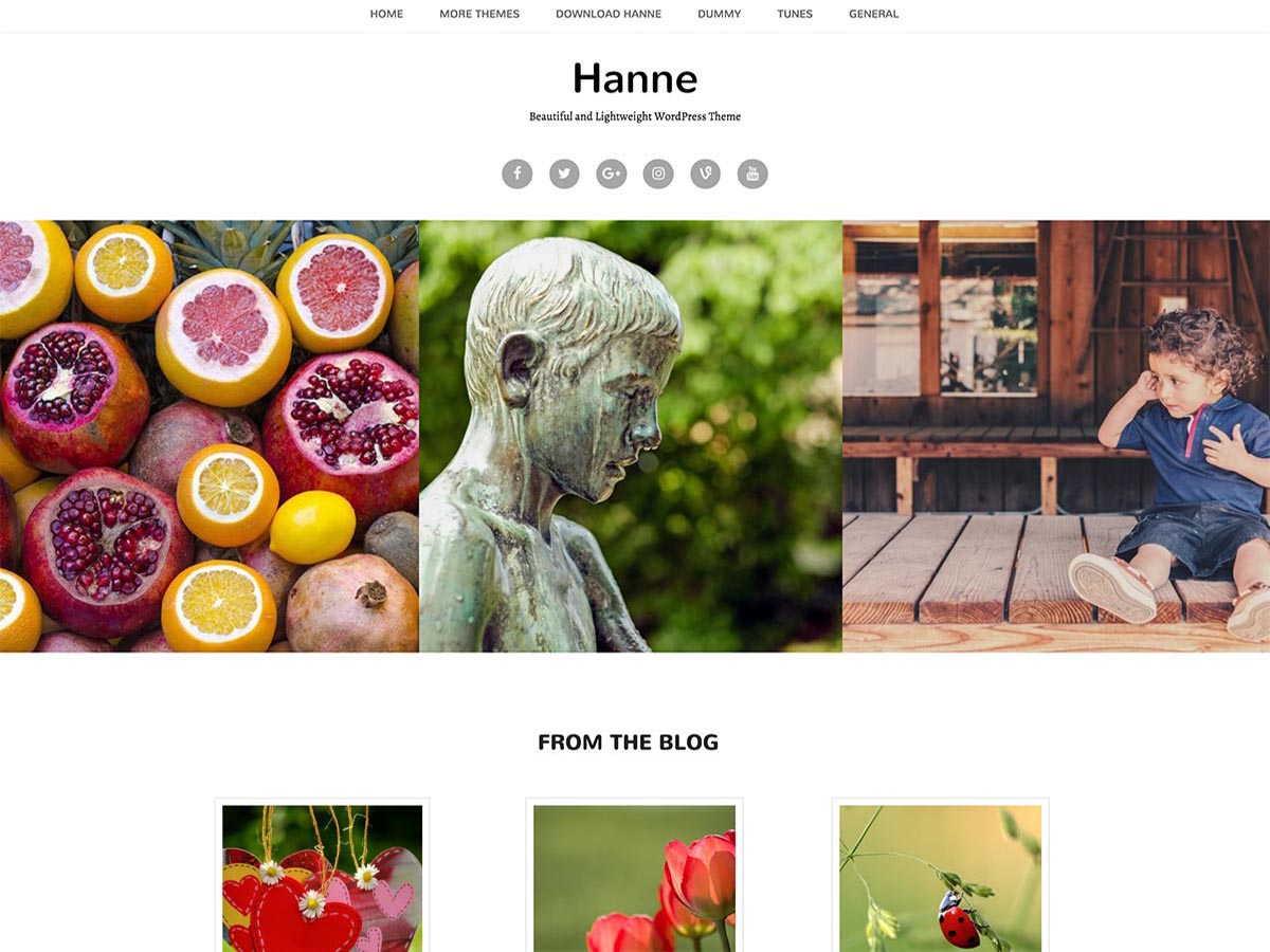17+ Best Free Nature Inspired WordPress Themes [sigma_current_year] 8