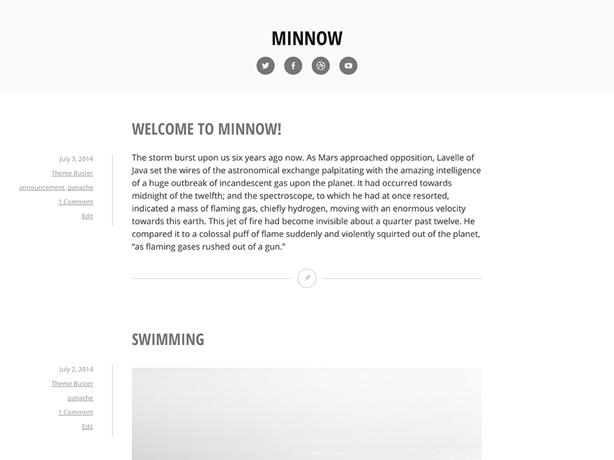 Minnow screenshot