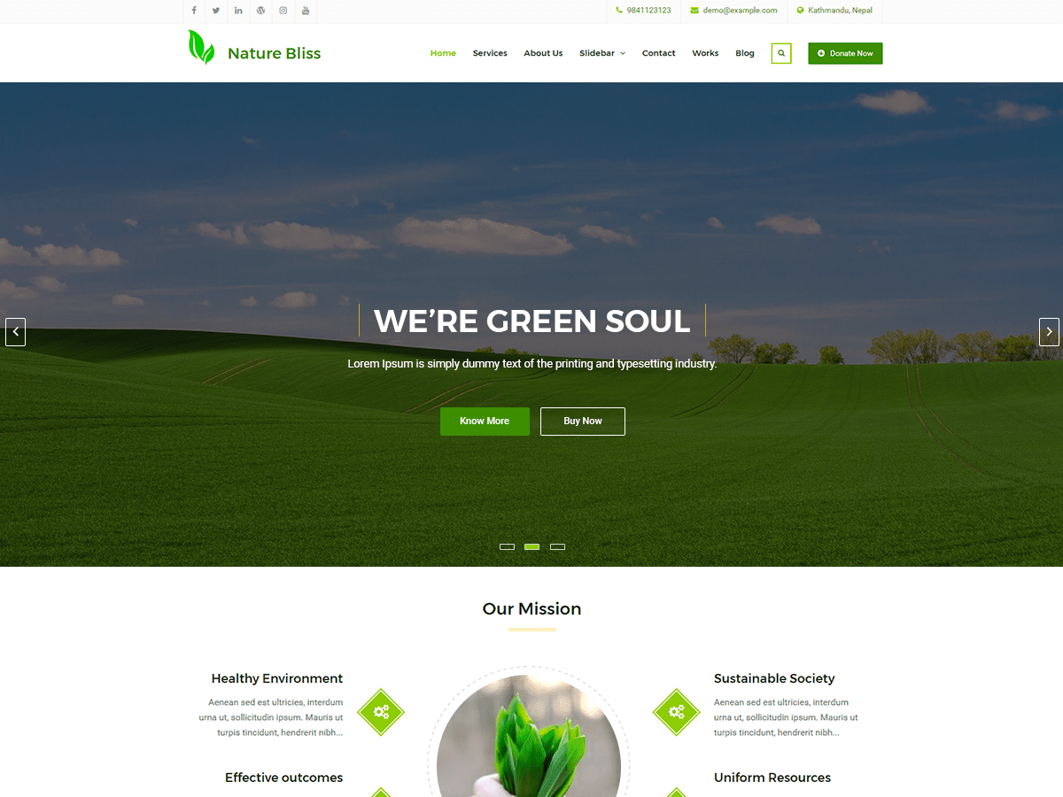 17+ Best Free Nature Inspired WordPress Themes [sigma_current_year] 5