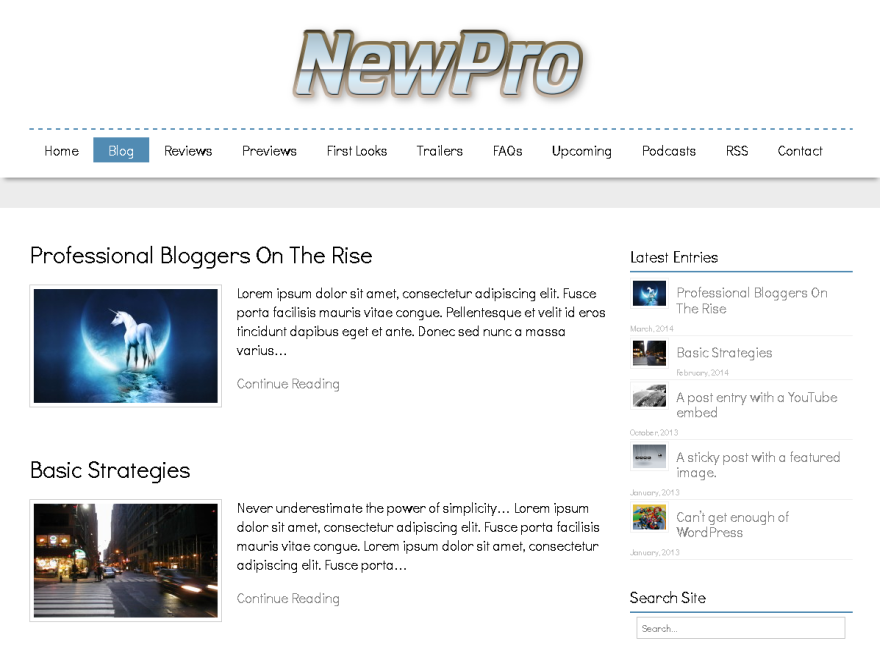 NewPro screenshot