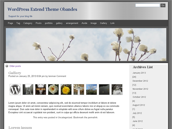 screenshot of theme obandes