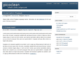 picoclean screenshot