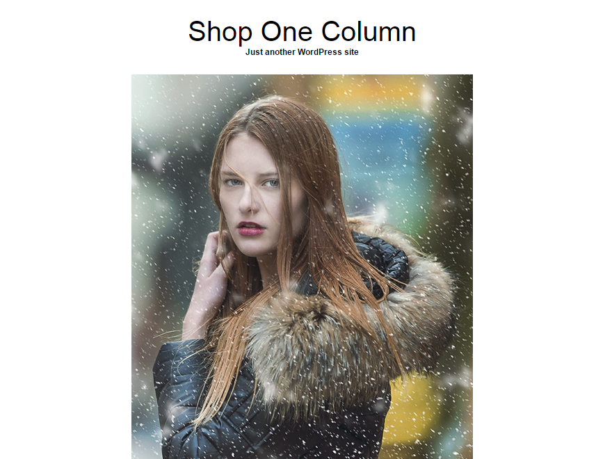 Shop One Column