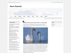 Snow Summit screenshot