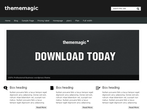 thememagic screenshot