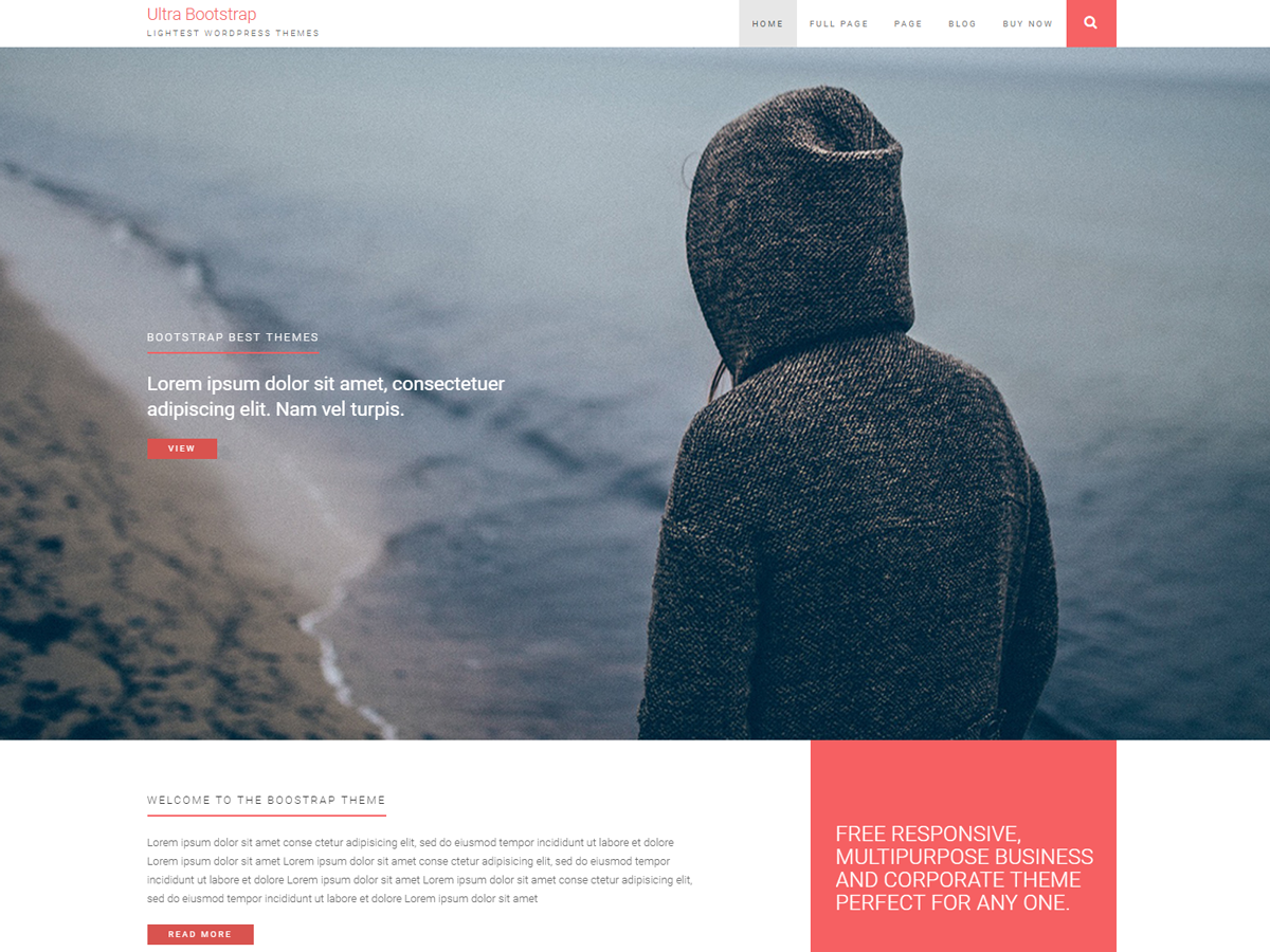Top 35+ Free Bootstrap WordPress Themes 2019 4