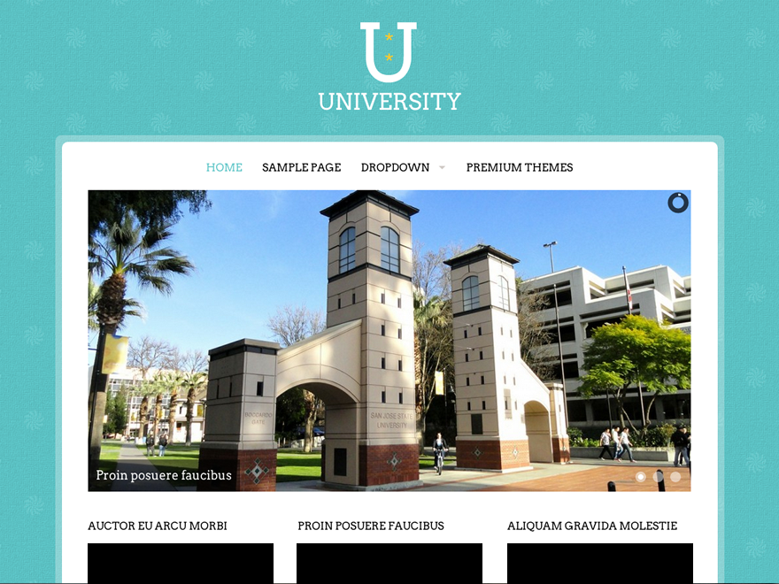 University screenshot