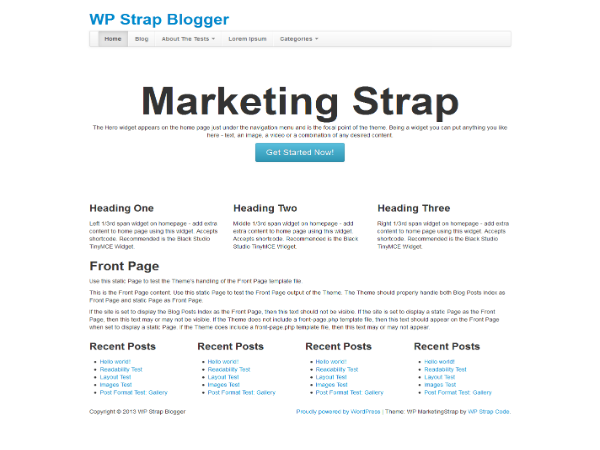 WP MarketingStrap screenshot