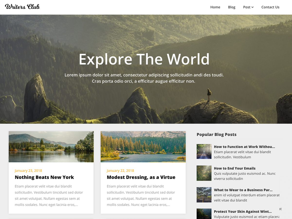 Writers Blogily WordPress Theme by themeeverest