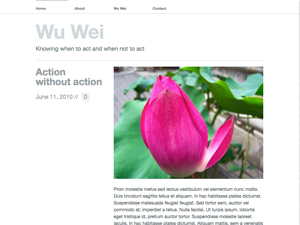 Wu Wei screenshot