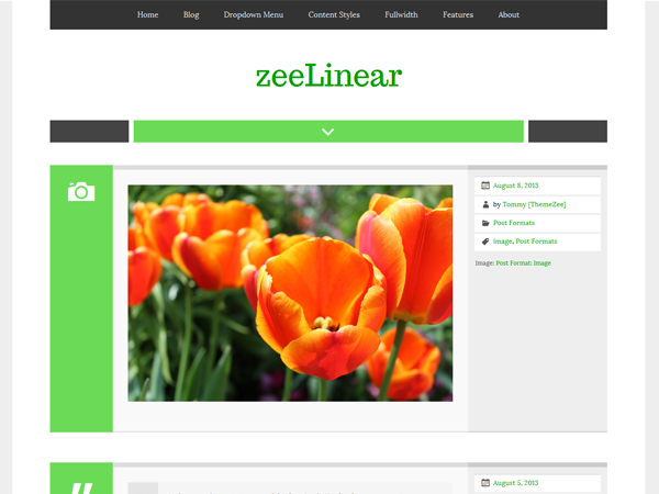 zeeLinear screenshot